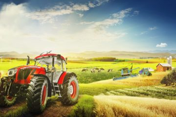 specialized farming, intensive farming, mono cropping